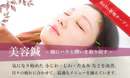 美容鍼 新規オープン / 顔にハリと潤いを